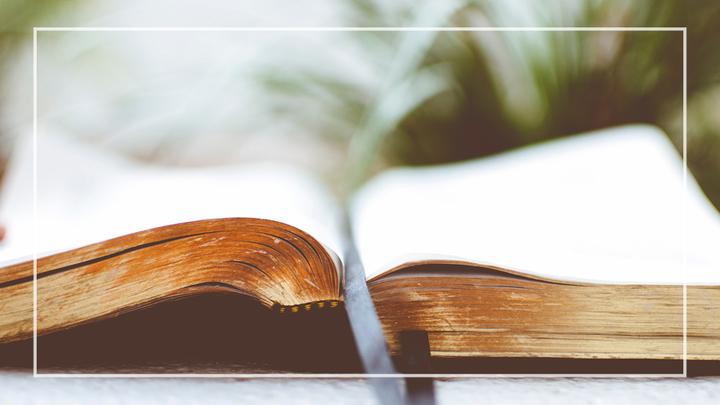 LTP:  Learning Biblical History logo image
