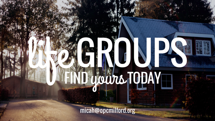 Fall 2019 Life Groups logo image