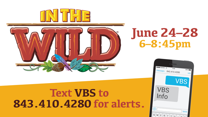VBS 2019 • In the Wild logo image