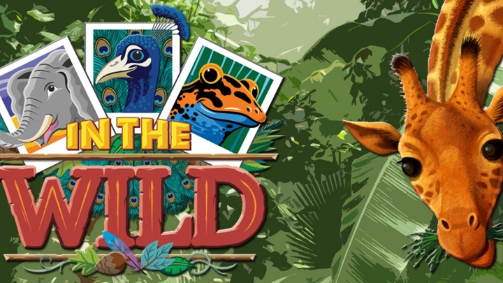 VBS 2019 In the Wild logo image