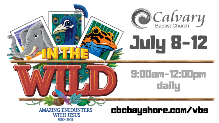 IN THE WILD 2019 VBS logo image