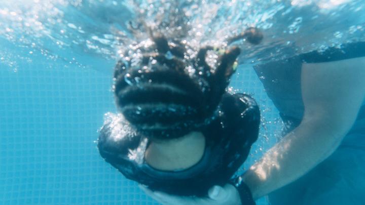 Water Baptisms: McKinney  logo image