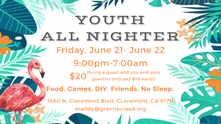 Youth All-Nighter logo image