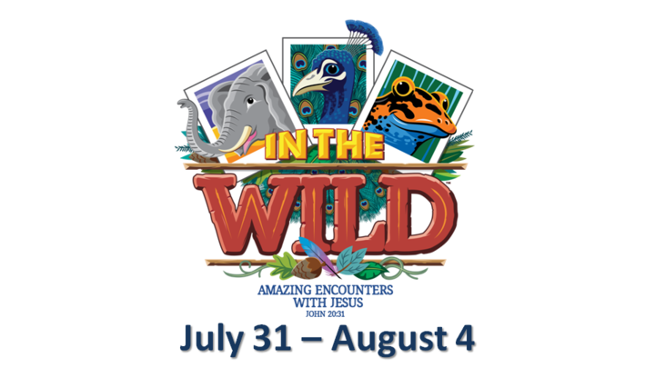 IN THE WILD! Vacation Bible School 2019 logo image