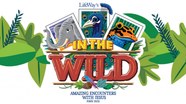 VBS 2019: In The Wild logo image
