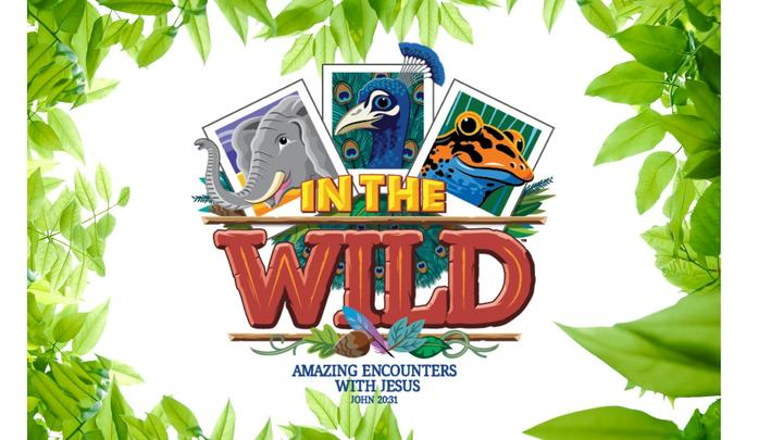 VBS 2019 In the Wild! logo image