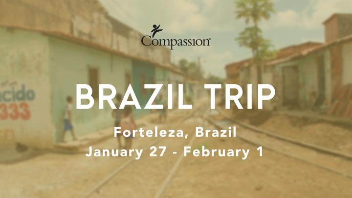 Brazil Trip logo image