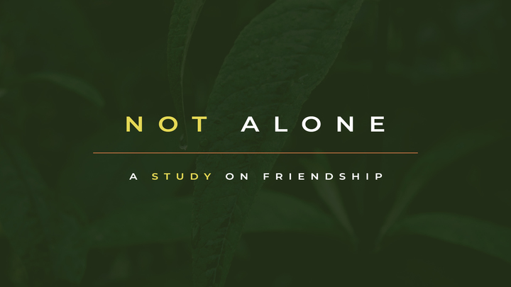 Not Alone: A Study on Friendship logo image