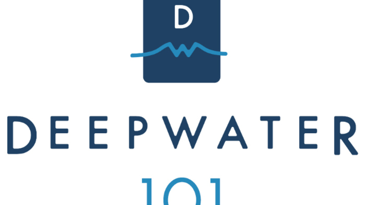 DW101 logo image