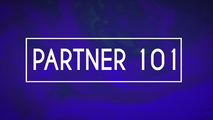 Partner 101 logo image