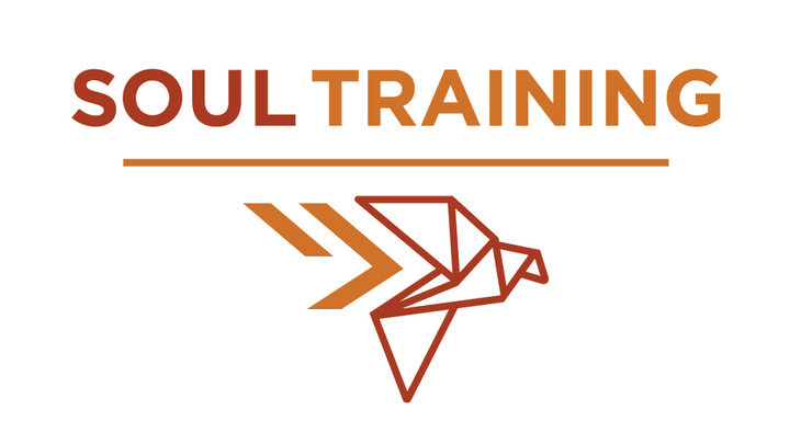 Soultraining: Transforming Our Habits - Learning to Live on Purpose logo image