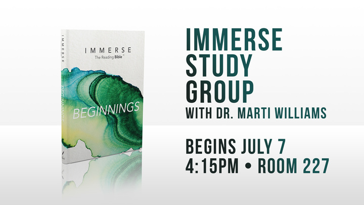 Immerse Study Group logo image