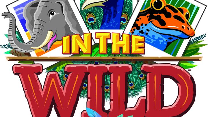 """V.B.S """"In the Wild"""" 2019 logo image"""