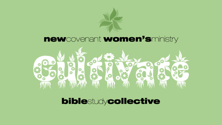 Bible Study Collective #4 logo image