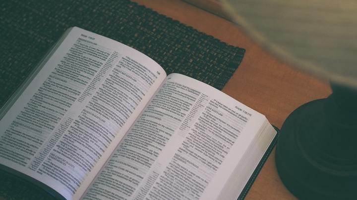 Tuesday Morning Ladies' Bible Study: Genesis 1 & 2 logo image
