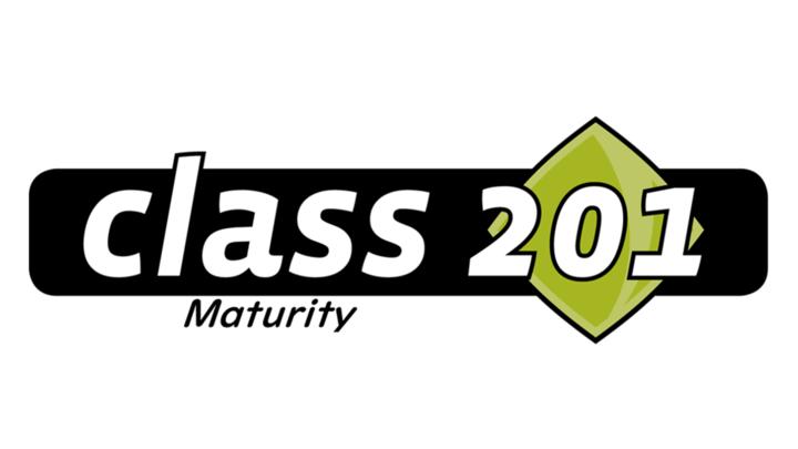 CLASS 201    -   DISCOVERING SPIRITUAL MATURITY logo image