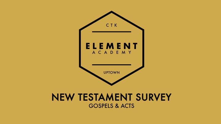 New Testament Survey (Gospels & Acts) logo image