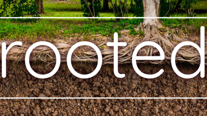 ROOTED (Fall Session 2019) logo image