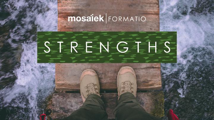 Formatio - Strengths Kursus saam met Wilma Geyser logo image
