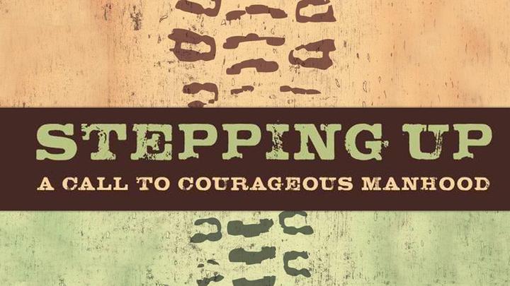 Stepping Up  logo image
