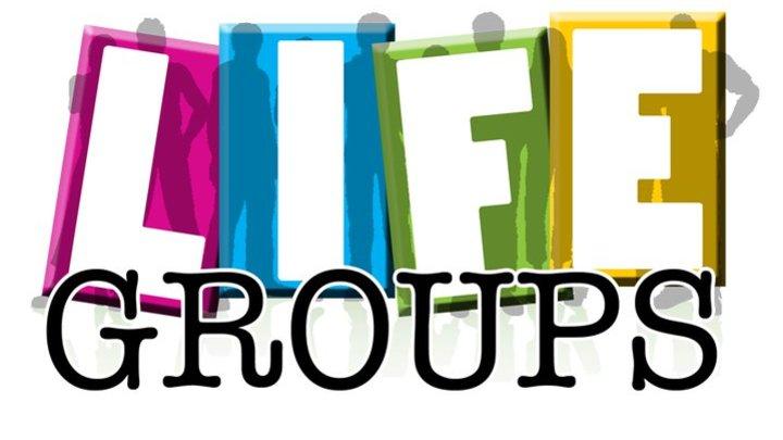 Life Group Mixer logo image
