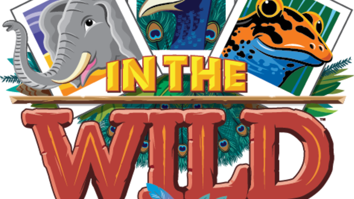 """In The Wild"" VBS 2019 logo image"