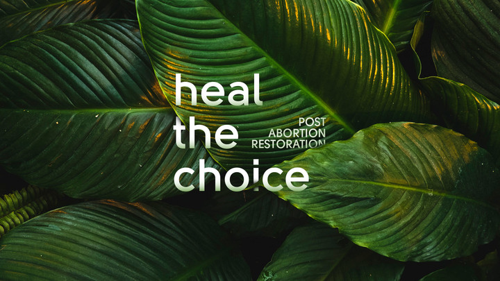 Heal the Choice - Post Abortion Restoration Class logo image