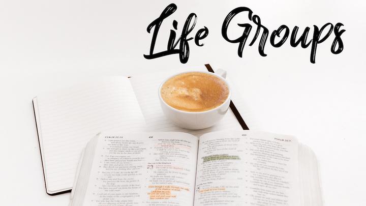 Life Groups logo image