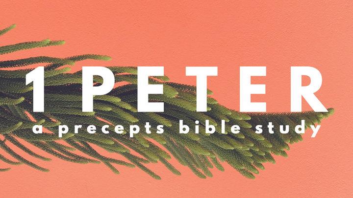Precepts Women's Bible Study logo image