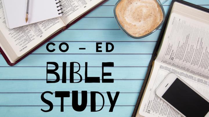 Co–Ed Bible Study – Sunday Mornings – Dave Nieuwsma logo image