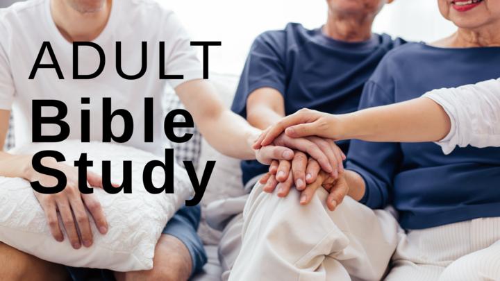 Adult Bible Study – Sundays twice monthly – Nieuwsma House logo image