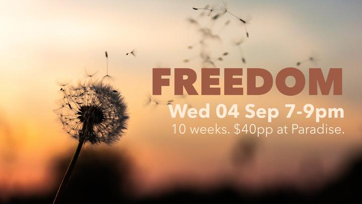 Freedom Course logo image