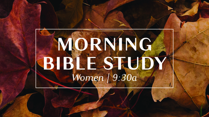 Tuesday Morning Bible Studies for Women  logo image