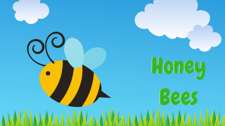 HoneyBees logo image