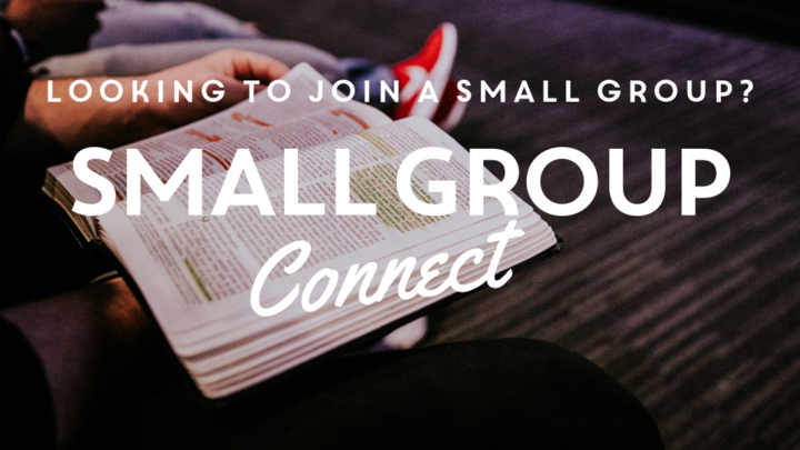 Small Group Connect logo image