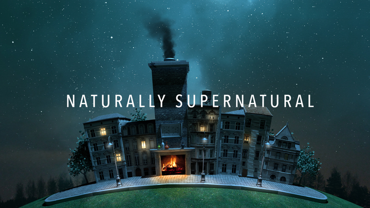 Naturally Supernatural logo image