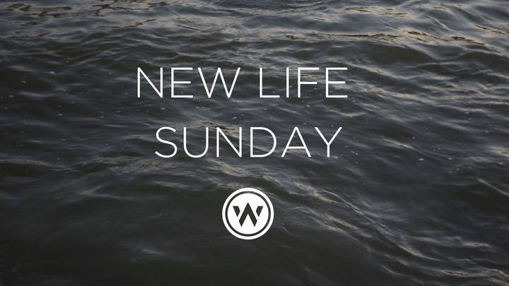 New Life Service   Baptisms   9am Service logo image