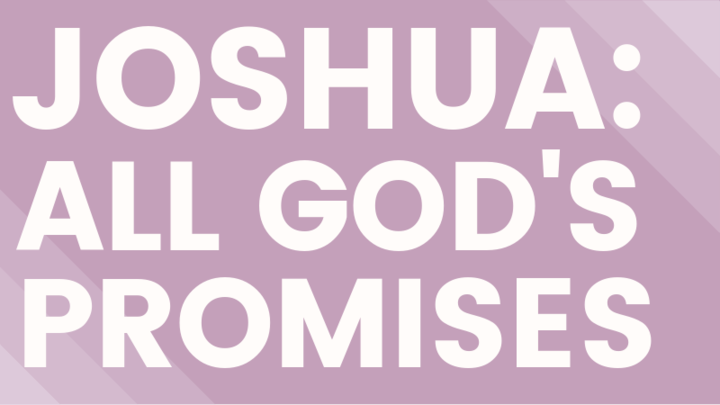 Women's Evening Study - Joshua logo image