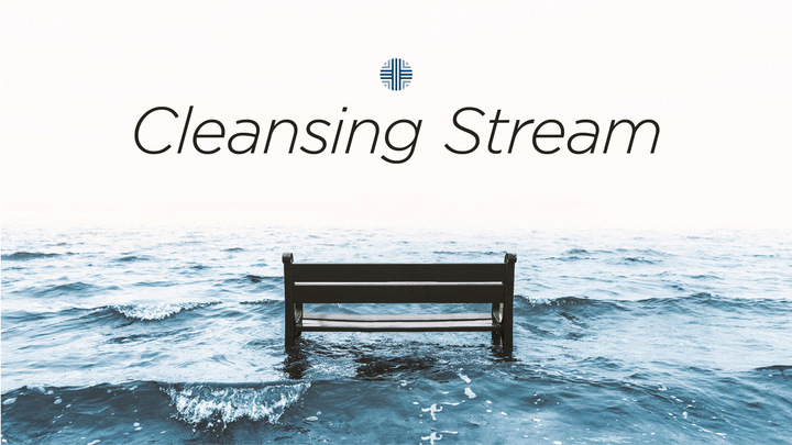 Deep Creek Cleansing Stream Fall 2019 logo image