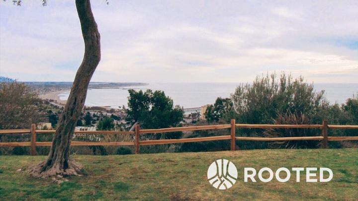 Rooted, 10-week Discipleship Program (fund 513) logo image