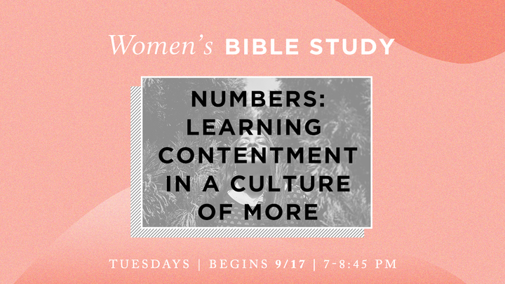 Women's Bible Study - Numbers: Learning Contentment in a Culture of More (Tuesday evenings) logo image