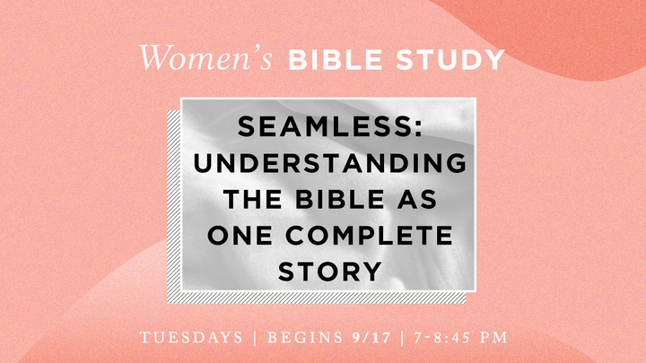 Women's Bible Study - Seamless: Understanding the Bible as One Complete Story (Tuesday evenings) logo image