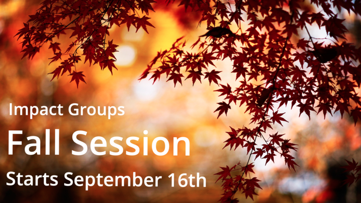 Impact Groups Fall Session 2019 logo image