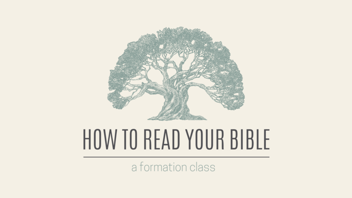 How to Read Your Bible — New Testament logo image