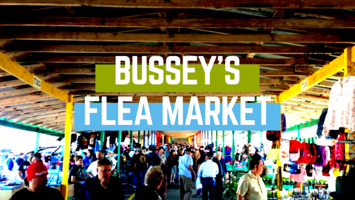 Bussey's Flea Market logo image