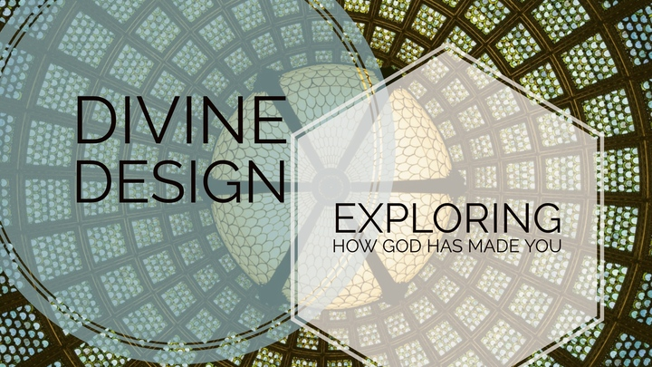 Divine Design Workshop logo image