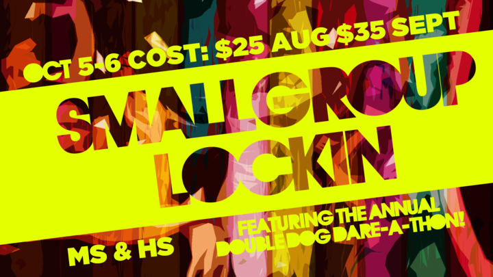 Small Group Lock-In 2019 logo image