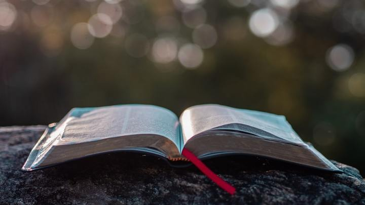 Singles' Bible Study logo image