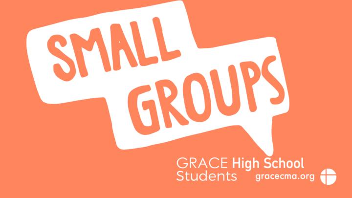 High School Small Groups logo image