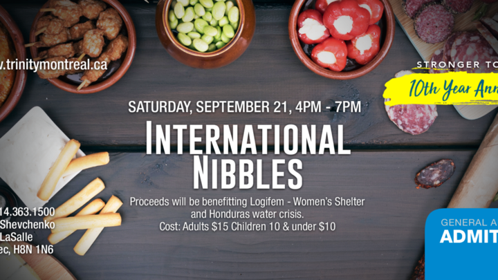 International Nibbles logo image